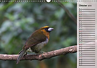 Vogelparadies Costa Rica (Wandkalender 2019 DIN A3 quer) - Produktdetailbild 10