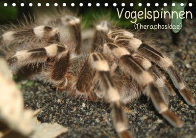 Vogelspinnen (Theraphosidae)CH-Version (Tischkalender 2019 DIN A5 quer), Barbara Mielewczyk