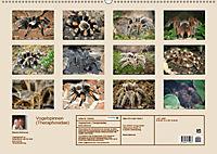 Vogelspinnen (Theraphosidae)CH-Version (Wandkalender 2019 DIN A2 quer) - Produktdetailbild 13
