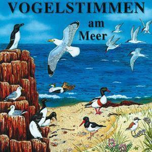 Vogelstimmen, Audio-CDs: Ed.6 Vogelstimmen am Meer, 1 Audio-CD, Vogelstimmen Ed.6