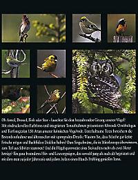 Vogelstimmen, m. Abspielgerät - Produktdetailbild 1