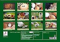 Vom Ei zum Huhn. Die Entwicklung von Küken (Wandkalender 2019 DIN A2 quer) - Produktdetailbild 13