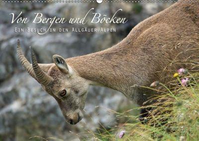 Von Bergen und Böcken (Wandkalender 2019 DIN A2 quer), Matthias Schaefgen