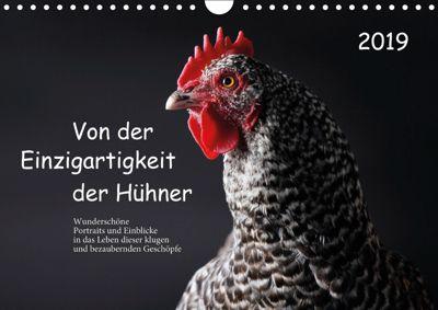 Von der Einzigartigkeit der Hühner (Wandkalender 2019 DIN A4 quer), Birte Peters