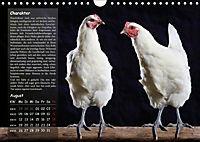 Von der Einzigartigkeit der Hühner (Wandkalender 2019 DIN A4 quer) - Produktdetailbild 8