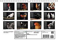 Von der Einzigartigkeit der Hühner (Wandkalender 2019 DIN A4 quer) - Produktdetailbild 13