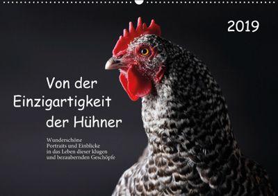 Von der Einzigartigkeit der Hühner (Wandkalender 2019 DIN A2 quer), Birte Peters