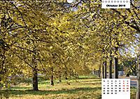 Vorsfelde 2019 (Wandkalender 2019 DIN A3 quer) - Produktdetailbild 10
