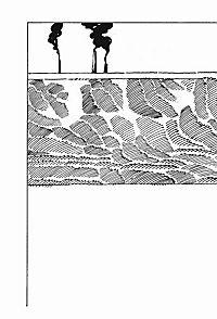 Vorstadtkrokodile Band 1: Vorstadtkrokodile - Produktdetailbild 2