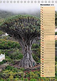 Vulkaninsel Teneriffa (Tischkalender 2019 DIN A5 hoch) - Produktdetailbild 10