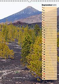Vulkaninsel Teneriffa (Wandkalender 2019 DIN A3 hoch) - Produktdetailbild 2