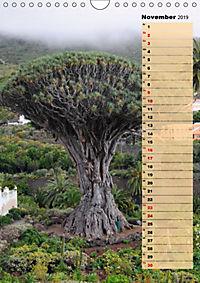 Vulkaninsel Teneriffa (Wandkalender 2019 DIN A4 hoch) - Produktdetailbild 11