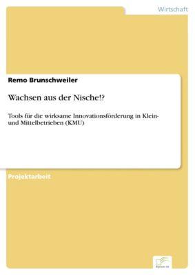 Wachsen aus der Nische!?, Remo Brunschweiler