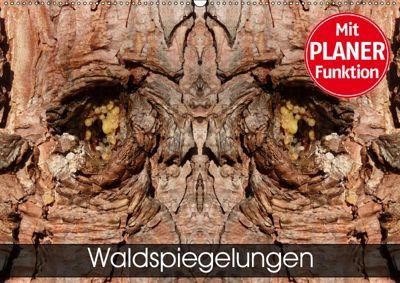 Waldspiegelungen (Wandkalender 2019 DIN A2 quer), Elken Schlüfter