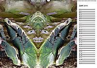 Waldspiegelungen (Wandkalender 2019 DIN A2 quer) - Produktdetailbild 6
