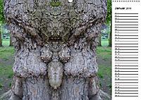 Waldspiegelungen (Wandkalender 2019 DIN A2 quer) - Produktdetailbild 1