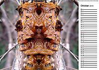 Waldspiegelungen (Wandkalender 2019 DIN A2 quer) - Produktdetailbild 10