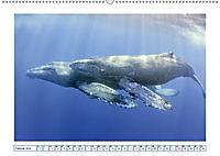 Wale: Giganten der Meere (Wandkalender 2019 DIN A2 quer) - Produktdetailbild 2