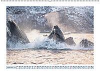 Wale: Giganten der Meere (Wandkalender 2019 DIN A2 quer) - Produktdetailbild 9