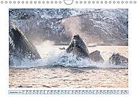 Wale: Giganten der Meere (Wandkalender 2019 DIN A4 quer) - Produktdetailbild 9