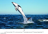Wale und Delphine 2019 - Produktdetailbild 3