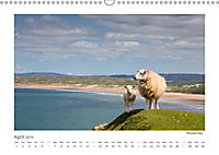 WALES / UK-Version (Wall Calendar 2019 DIN A3 Landscape) - Produktdetailbild 4