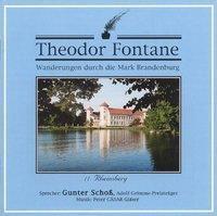 Wanderungen durch die Mark Brandenburg, Audio-CDs: Tl.11 Rheinsberg, 1 Audio-CD, Theodor Fontane