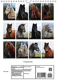 Wandkalender Ponyportraits (Wandkalender 2019 DIN A4 hoch) - Produktdetailbild 13