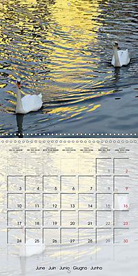 WARE on the River Lea (Wall Calendar 2019 300 × 300 mm Square) - Produktdetailbild 6