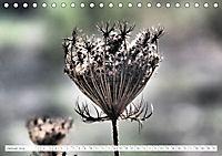 Warten auf Regen (Tischkalender 2019 DIN A5 quer) - Produktdetailbild 1
