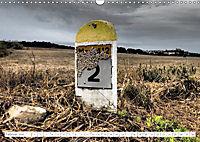 Warten auf Regen (Wandkalender 2019 DIN A3 quer) - Produktdetailbild 2