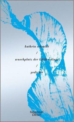 waschplatz der kühlen dinge - Kathrin Schmidt |