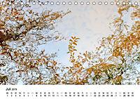 Wasser-Farben (Tischkalender 2019 DIN A5 quer) - Produktdetailbild 7