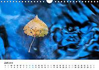 Wasser-Farben (Wandkalender 2019 DIN A4 quer) - Produktdetailbild 6