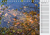 Wasser Flächen (Tischkalender 2019 DIN A5 quer) - Produktdetailbild 9