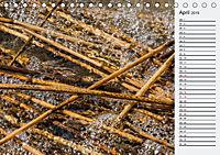 Wasser Flächen (Tischkalender 2019 DIN A5 quer) - Produktdetailbild 4