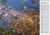 Wasser Flächen (Wandkalender 2019 DIN A2 quer) - Produktdetailbild 9
