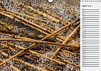 Wasser Flächen (Wandkalender 2019 DIN A3 quer) - Produktdetailbild 4