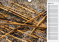 Wasser Flächen (Wandkalender 2019 DIN A4 quer) - Produktdetailbild 4