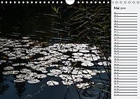 Wasser Flächen (Wandkalender 2019 DIN A4 quer) - Produktdetailbild 5