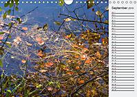 Wasser Flächen (Wandkalender 2019 DIN A4 quer) - Produktdetailbild 9