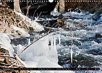 Wasser - Leben-Kraft-Stille-Bewegung (Wandkalender 2019 DIN A3 quer) - Produktdetailbild 12