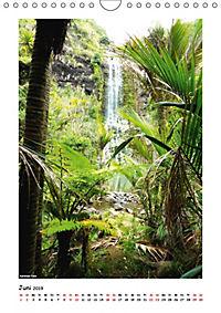 Wasserfälle Neuseelands (Wandkalender 2019 DIN A4 hoch) - Produktdetailbild 6