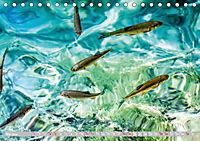 Wasserparadies Plitvicer Seen (Tischkalender 2019 DIN A5 quer) - Produktdetailbild 5