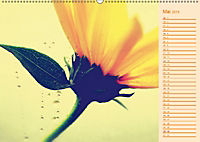 Wassertropfen Design (Wandkalender 2019 DIN A2 quer) - Produktdetailbild 5
