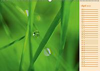 Wassertropfen Design (Wandkalender 2019 DIN A2 quer) - Produktdetailbild 4