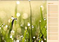 Wassertropfen Design (Wandkalender 2019 DIN A2 quer) - Produktdetailbild 6