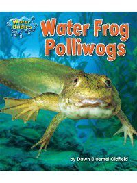 Water Babies: Water Frog Polliwogs, Dawn Bluemel Oldfield