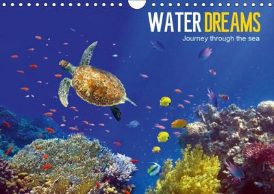 Water Dreams-journey through the sea (Wall Calendar 2019 DIN A4 Landscape), Tina Melz