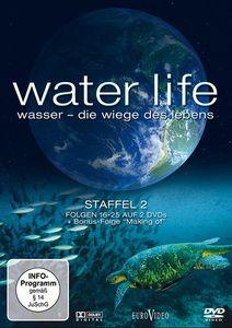 Water Life: Wasser - Die Wiege des Lebens, Staffel 2, Folgen 16-26, Gordon Piedesack, Steve Hughes